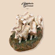 801-rebaño-ovejas